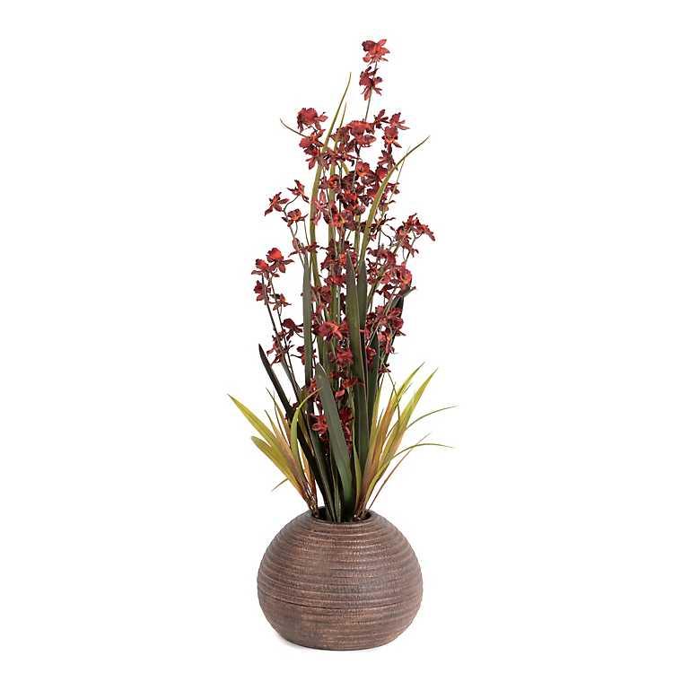 Red Dancing Orchid Floral Arrangement Kirklands