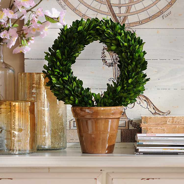 Boxwood Wreath Preserved Topiary 13 In Kirklands