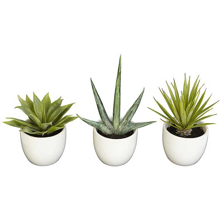 Faux Agave Plants In Ceramic Pots Set Of 3 Kirklands