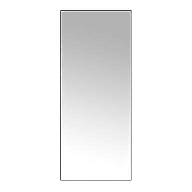 Black Metal Linear Mirror 30x70, Full Length Mirror Black Trim