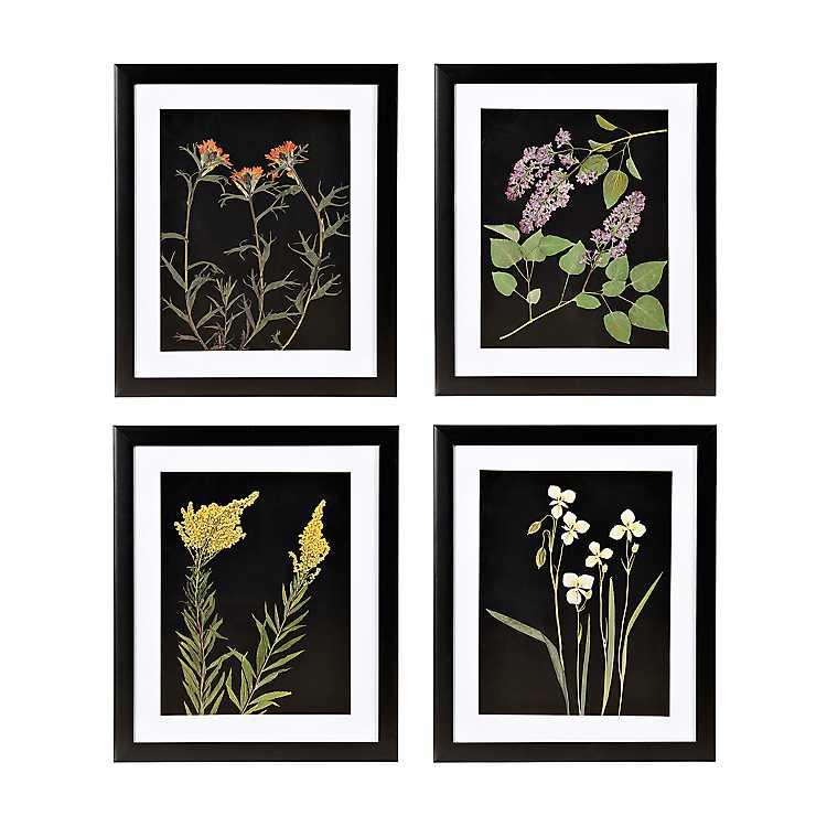 Pressed Flowers Framed Art Prints Set Of 4 Kirklands